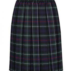 Navy/Green Tartan Skirt